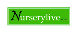 Nurserylive -  Deals